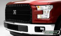 How to install a T-REX X-Metal main grille on a 2015-2017 Ford F150