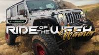 TREX Grilles Ride of the Week Winner! Jason Lutonsky and his 2015 Jeep Wrangler